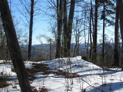 Residential Lots & Land For Sale: TBD Rock Hill (Off Rd)