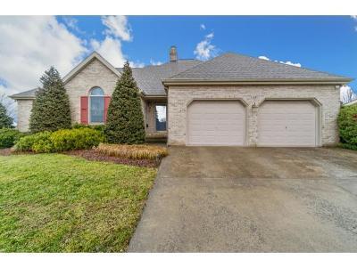 Jonesborough Single Family Home For Sale: 108 Oakwell Lane