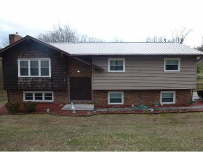 Kingsport Single Family Home For Sale: 317 Bays Cove Trail