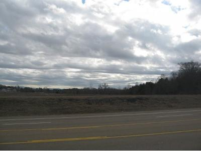 Blountville Residential Lots & Land For Sale: TBD Highway 394