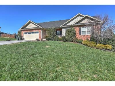 Jonesborough Single Family Home For Sale: 552 Elmer Walker Rd