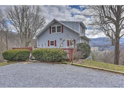Single Family Home For Sale: 225 Blue Grass Road