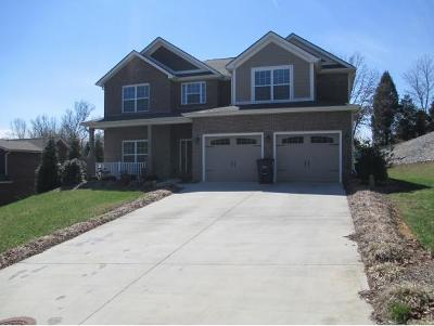 Kingsport Single Family Home For Sale: 128 Warrior Falls Drive