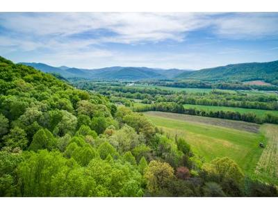 Residential Lots & Land For Sale: TBD Taylor Bridge Road