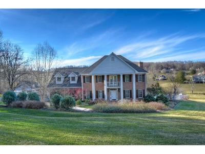 Jonesborough Single Family Home For Sale: 669 Headtown Rd