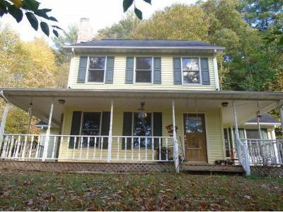 Mountain City Single Family Home For Sale: 800 Reece Hill Road