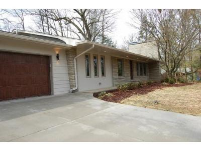 Johnson City Single Family Home For Sale: 1203 Lester Harris Road