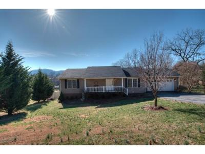 Bristol TN Single Family Home For Sale: $199,985