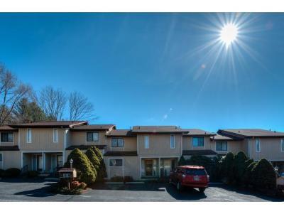 Bristol TN Condo/Townhouse For Sale: $109,985