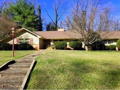 Johnson City Single Family Home For Sale: 1507 Woodland Avenue