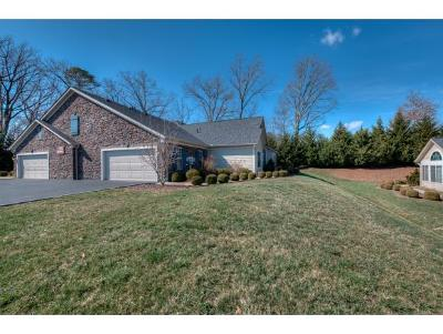 Blountville Condo/Townhouse For Sale: 1312 Hatterdale Farm Rd #1312