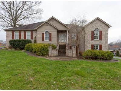 Piney Flats Single Family Home For Sale: 267 Rangewood Rd