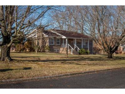 Bristol TN Single Family Home For Sale: $189,900