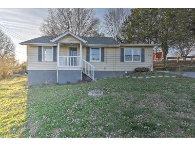 Johnson City Single Family Home For Sale: 2215 Oak St