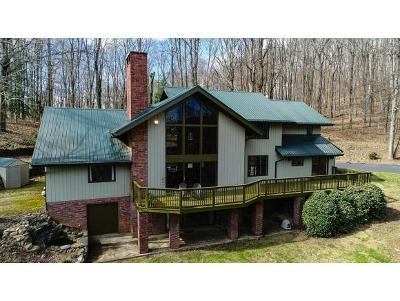 Blountville Single Family Home For Sale: 290 Rollin Hills Private Drive