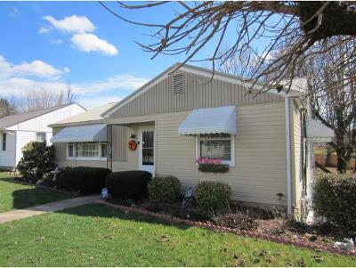 Bristol Single Family Home For Sale: 103 Holston View Drive