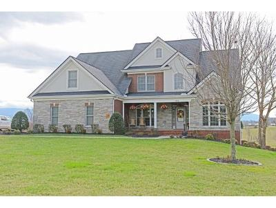 Greeneville TN Single Family Home For Sale: $449,900