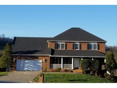 Johnson City TN Single Family Home For Sale: $265,000