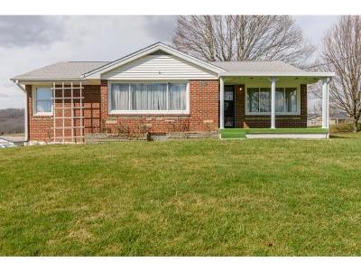 Bristol Single Family Home For Sale: 9533 Reedy Creek Road