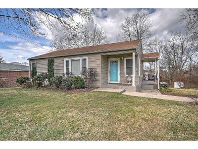 Bristol VA Single Family Home For Sale: $132,900