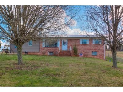 Bluff City Single Family Home For Sale: 608 Walnut Grove Rd.