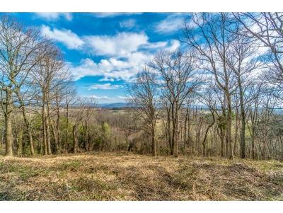 Washington-Tn County Residential Lots & Land For Sale: TBD Redstone Rd Lot#5