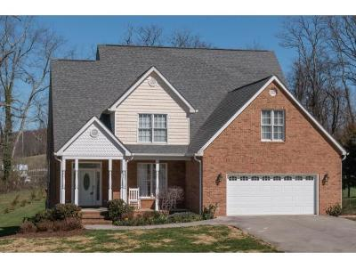 Bristol TN Single Family Home For Sale: $329,800