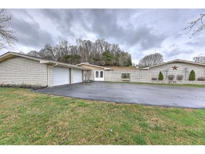 Bluff City Single Family Home For Sale: 522 Blanches View Dr