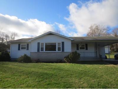 Elizabethton Single Family Home For Sale: 1669 Highway 91