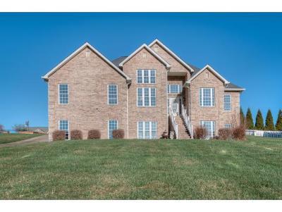 Bristol Single Family Home For Sale: 139 Morse Dr