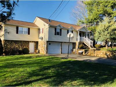 Telford Single Family Home For Sale: 442 Miller Road