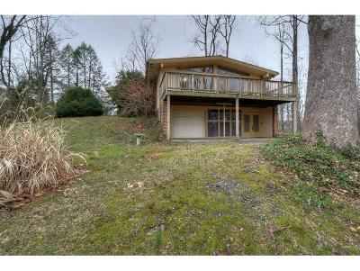 Johnson City Single Family Home For Sale: 112 Ridgemont Road
