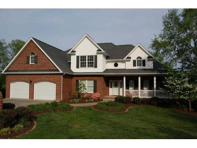 Johnson City Single Family Home For Sale: 306 Michaels Ridge Blvd