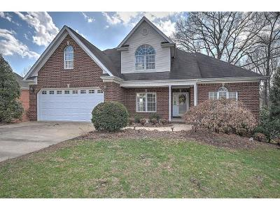 Blountville Single Family Home For Sale: 116 Rose Trace Court