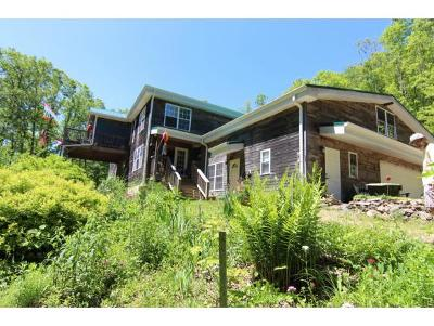 Trade Single Family Home For Sale: 1307 Stone Mountain Road