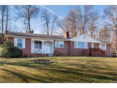 Bristol Single Family Home For Sale: 100 Knob Hill Drive