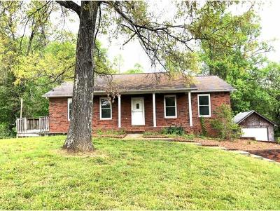 Single Family Home For Sale: 3709 Chert Drive
