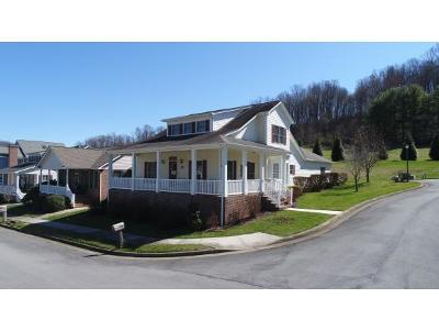 Bristol VA Single Family Home For Sale: $262,500