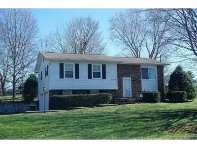 Bristol Single Family Home For Sale: 248 Springfield Drive