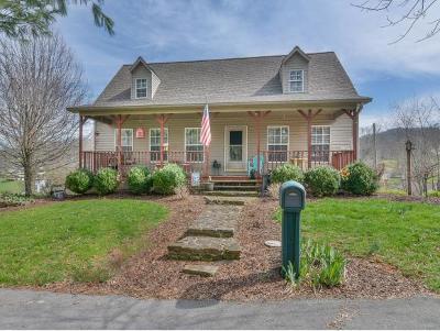 Unicoi Single Family Home For Sale: 1119 Sugar Hollow Loop