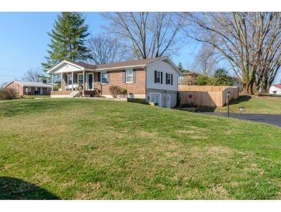 Bristol VA Single Family Home For Sale: $154,900