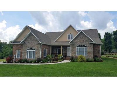 Elizabethton Single Family Home For Sale: 103 Willshire Drive