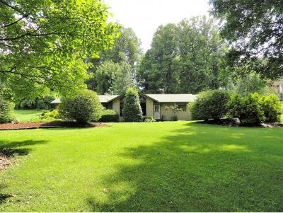 Elizabethton Single Family Home For Sale: 701 Quail Hollow Drive