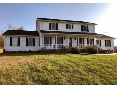 Bristol VA Single Family Home For Sale: $295,000