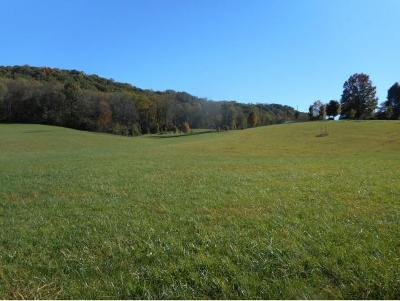Johnson City Residential Lots & Land For Sale: TBD Carroll Creek Road