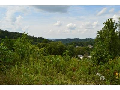 Residential Lots & Land For Sale: 131 Barnett Dr