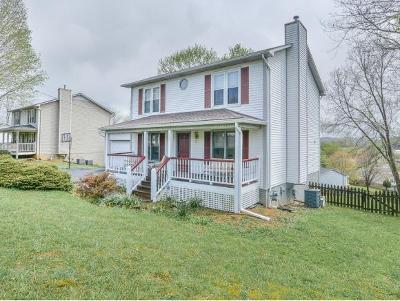 Johnson City Single Family Home For Sale: 154 Tucker