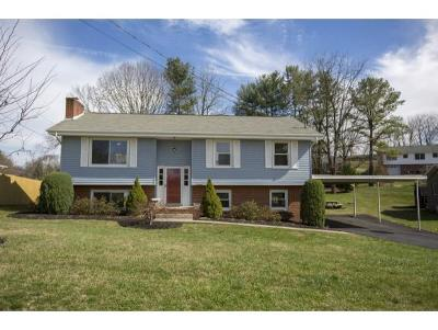 Bristol VA Single Family Home For Sale: $147,900