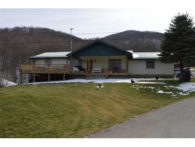 Roan Mountain Single Family Home For Sale: 501 Burbank Road