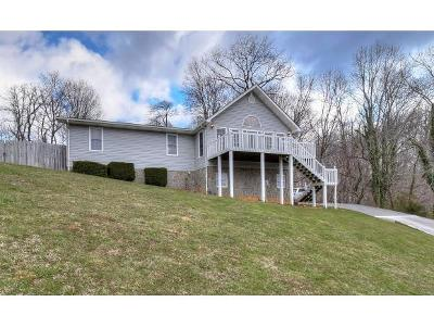 Unicoi Single Family Home For Sale: 426 Greenbrook Circle